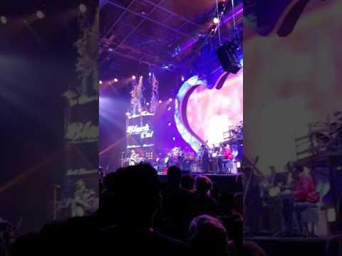 Zucchero se la prende con un fan che lo filma durante il concerto