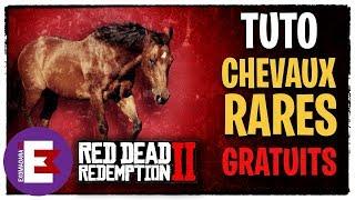 TUTO CHEVAL RARE GRATUIT (TOUTES RACES) AU CHOIX - RED DEAD REDEMPTION 2