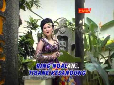Banyuwangi - Rondo Kembang # Cover