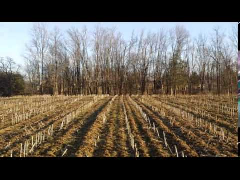 Accord, NY Farm For Sale 173 Airport Road