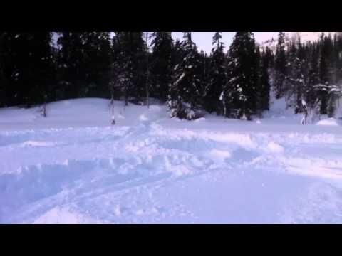 Ski-doo 1200