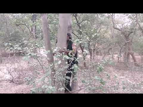 Jungle prank & funny video