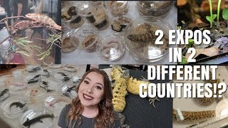 Going to TWO Expos in TWO DIFFERENT Countries!!?? | Reptile Expo Vlog