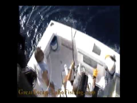 Great Escape Cabo Fishing