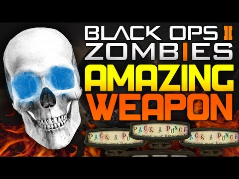 Black Ops 2 Zombies   ONE HIT KILL Gun Round 30 (BO2 Zombies DSR-50)