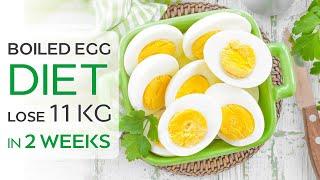 Weight Loss Dieting: Boiled Egg Diet Lose 11 Kg In 2 Weeks