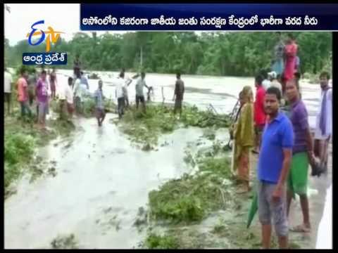 Floods Paralyse Normal Life in Bihar, Assam, West Bengal