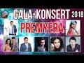 GALA KONSERT ONA YURT OHANGLARI 2018 Yanvar Alpomish Media mp3