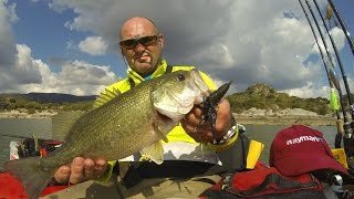 Bass fishing in Sardegna col MORVO in bellyboat & RAYMARINE 3