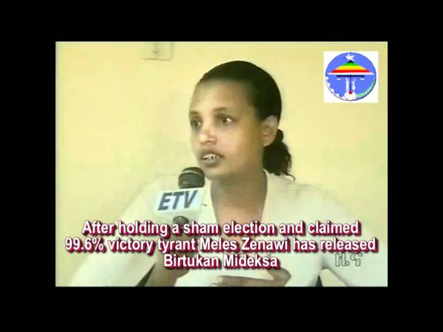 Ethiopia:When Birtukan Mideksa Released From Prison