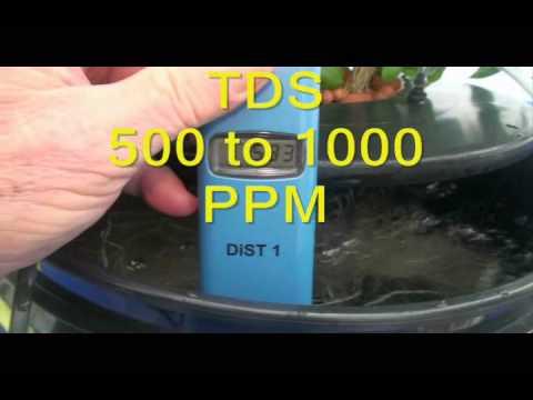 Dwc Hydroponics Bucket System Update