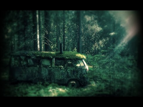 Camping in deep forest-Creepypasta #1