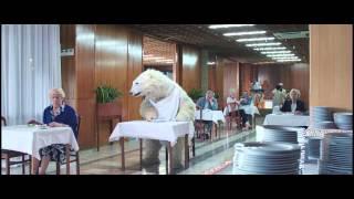 Bonbon Polarni medo