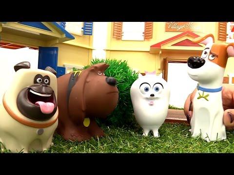Сборник видео для детей. Тайная жизнь домашних животных