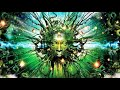 Psychedelic Deep Trance Psychill Music Mix mp3