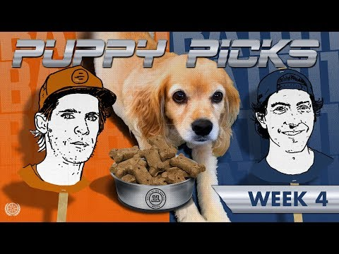 BATB 11 | Puppy Picks: Week 4