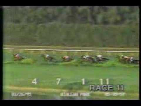 Hialeah Park - 1995 Royal Palm Handicap