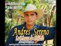 Andres Sereno de La Princesa de mi Canto