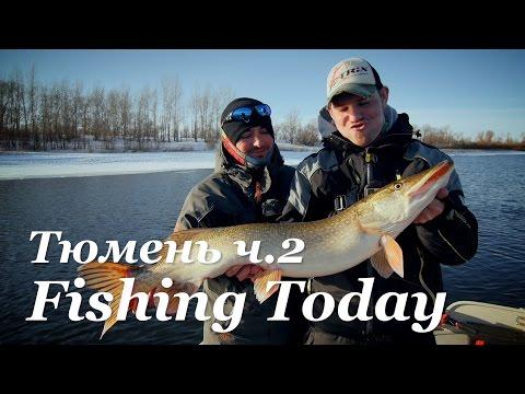 сезон рыбалки в тюмени