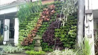 C mo crear un jard n vertical viyoutube for Jardin vertical sodimac