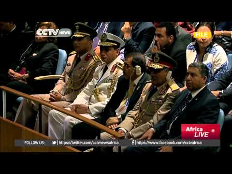 Egypt abstains from UNSC vote on punishing abuses by UN troops