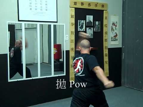 The Ten Elements of Choy Lay Fut Kung Fu Image 1