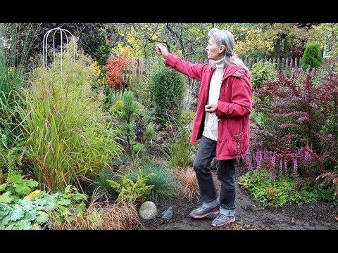 Цветник легкого ухода своими руками – фото и выбор растений