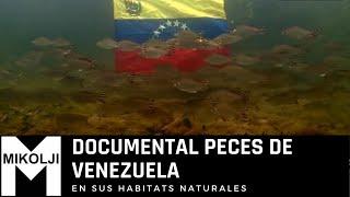 DOCUMENTAL PECES DE VENEZUELA