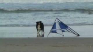 South Africa kite clip 2009.mp4