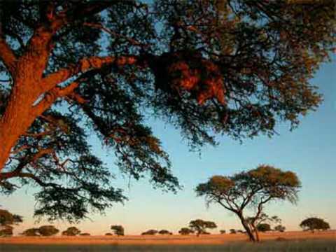 Dr. Alban vs. Sash! - Hello South Africa (Marc Lime & K Bastian RMX)