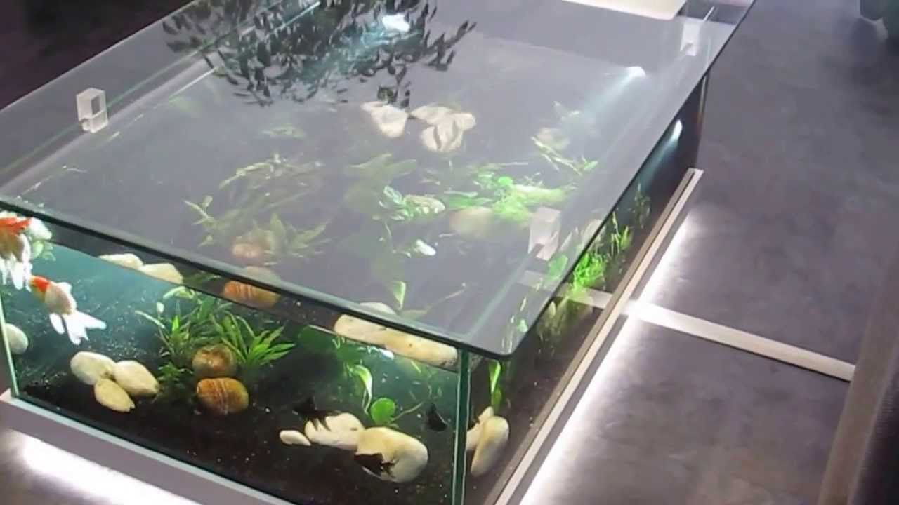 Aquarium d 39 eau douce table aquarium amazone odyssee for Tables basses contemporaines