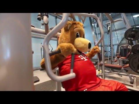 "FC Bayern Munich Mascot ""Berni""  الدب ""بيرني"" يصل إلى مطار حمد الدولي"