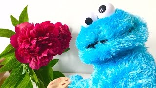 Cookie Monster loves Flowers