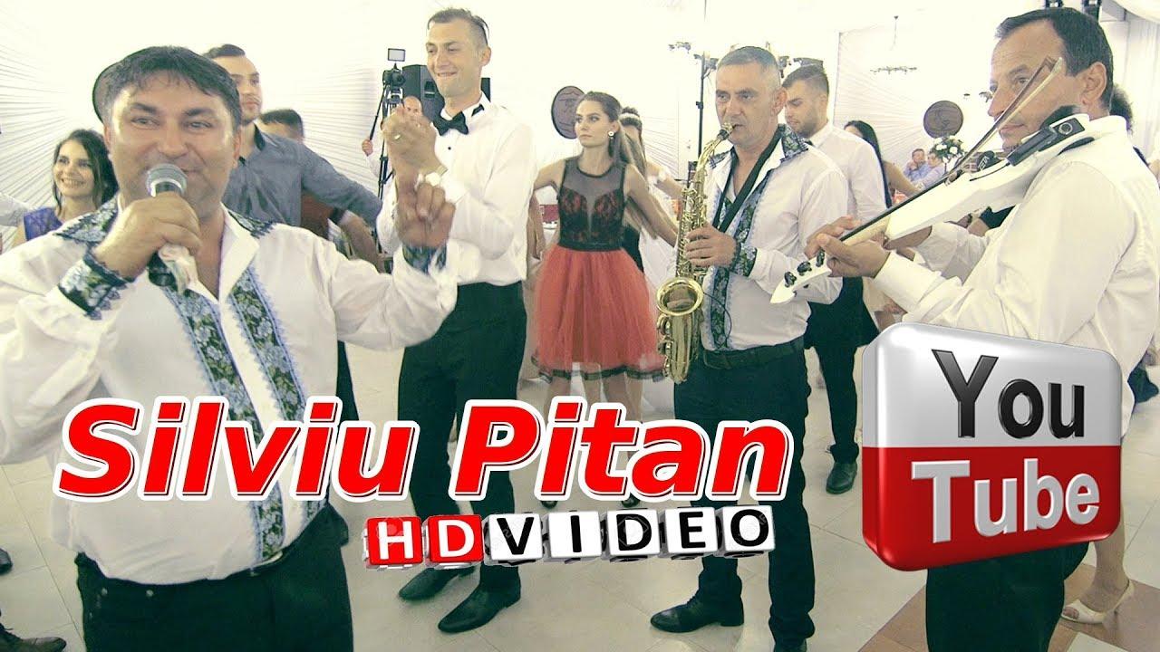 Silviu Pitan si Costica Dindiri - Se duc anii unu cate unu | Colaje HORA Ionut & Alexandra