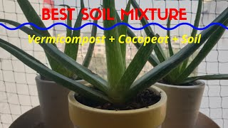 [हिंदी] How to use Cocopeat Block | Prepare Soil | Vermicompost | Repotting Plants | Aloe Vera Care