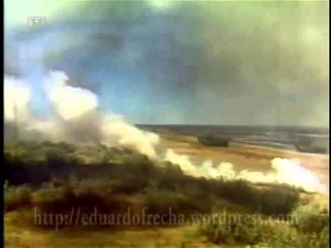 Malvinas: Archivo de video Nº 1