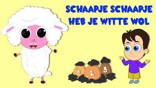 Nederlandse Kinderliedjes | Schaapje schaapje, heb je witte wol? etc.