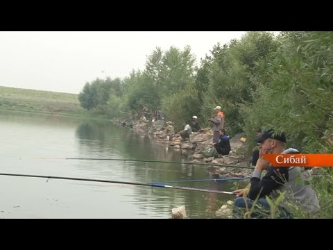 рыбалка сибай форум