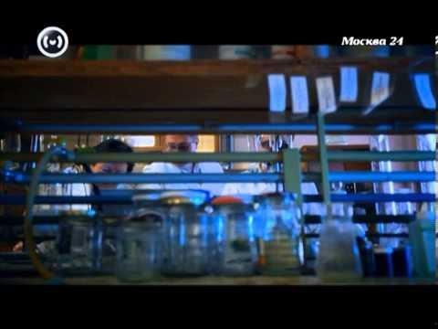 """""""Познавательный фильм"""": Где и как получить патент на изобретение"""