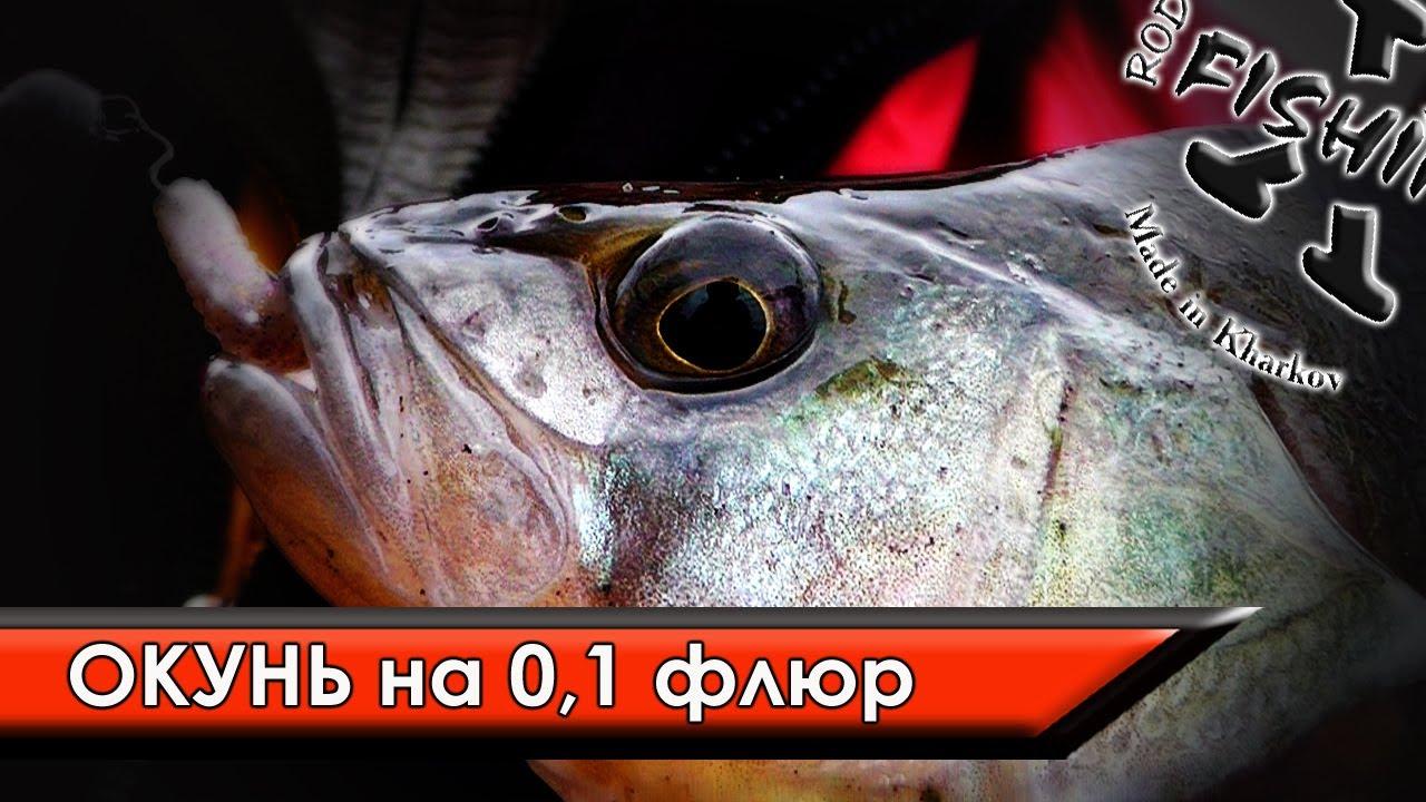 про рыбалку на толстолоба на самодельную прикормку