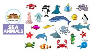 SEA ANIMALS! Kids Videos by Learning Lane