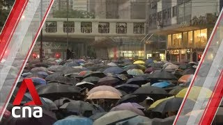 Many feel protesters have stepped over the line by harassing airport passengers: HK analyst