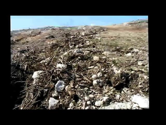 Masacre Ambiental en Guayanilla Boca-Indios  y Yauco Barinas Sector Santa Rosa Windmar Mayo 2012