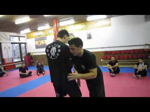 jeet kune do grappling - lesson 7 - luca marinello 2011 Image 1