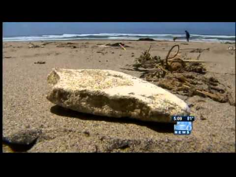 Talks continue over Japanese tsunami debris cleanup plans