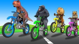 Wild Animals Motorbike Race Videos For Kids Children | Learn Animals Race Video | Learn Colors
