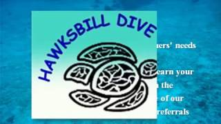 Learn Diving in Praslin Island from Hawksbill Dive Center