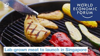 Video: Lab-grown meat approved for sale in Singapore - World Economic Forum
