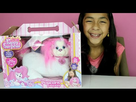 Puppy Surprise Popcorn & Her Pups |B2cutecupcakes