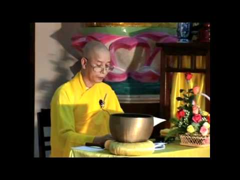 Tiếp xúc với bảy bước chân đi của Đức Phật